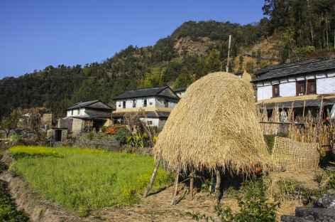 Village Magar - Népal -