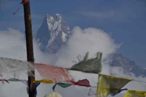 Le Machhapuchhare (6997 m) - Népal -