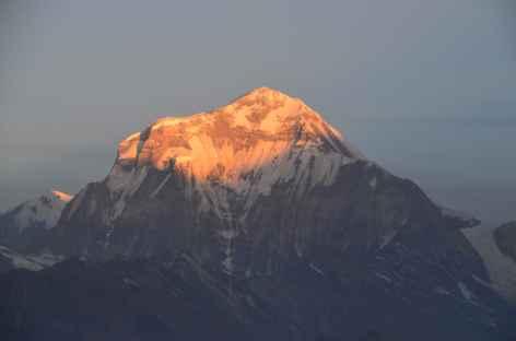 Le Dhaulagiri (8167 m) - Népal -