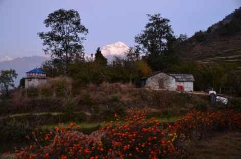 Village de Swanta - Népal -