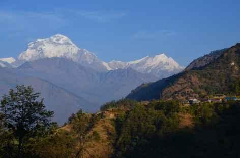 Swanta et Dhaulagiri - Népal -