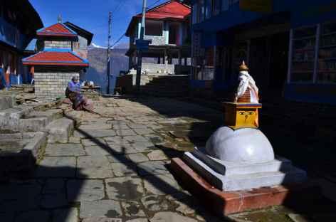 Ghorepani (2900 m) - Népal -