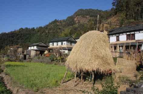 la campagne traditionnelle au Népal -