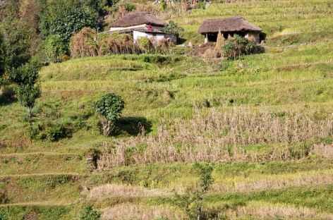 Village du Népal -