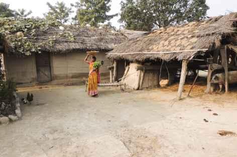 Village Tharu, Népal -