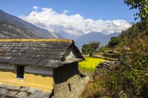 Vue de Majgaun, Népal -