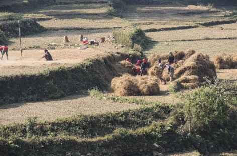 Sur le bord des Routes - Népal -