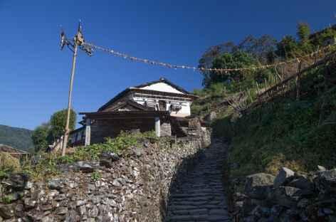 Sentier sur le sud des Annapurna- Népal -