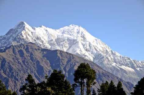 Dernière journée de trek face au Langtang Lirung - Népal -