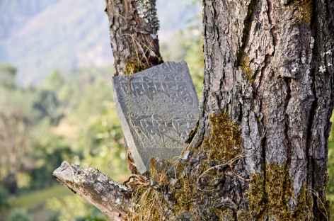 Au détour du chemin - Vallée d'Helambu - Népal -