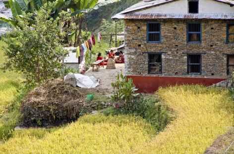 Beau village la région d'Helambu - Népal -