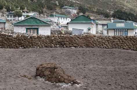 Sechage des bouses (combustible) - Népal -
