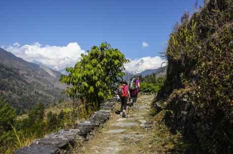 Trek sur les chemins vers Birethanti - Népal -