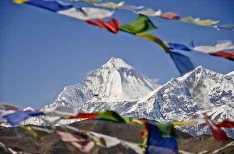 Le Dhaulagiri 8167 m - Népal -