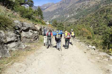 Large chemin vers Timang - Népal -