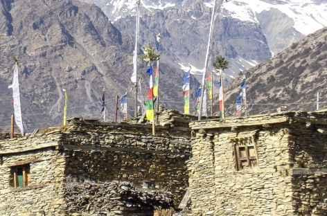Chulu Far East depuis Gyaru - Népal -