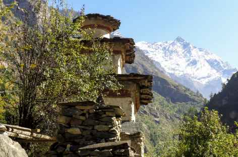 Montée vers Deng - Népal -