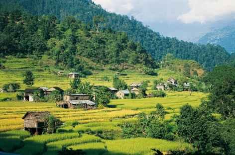 Vallée de la Marsyangdi Khola - Népal -