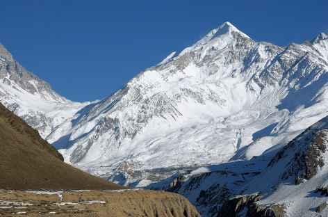 La face Ouest du Thorong peak - Népal -