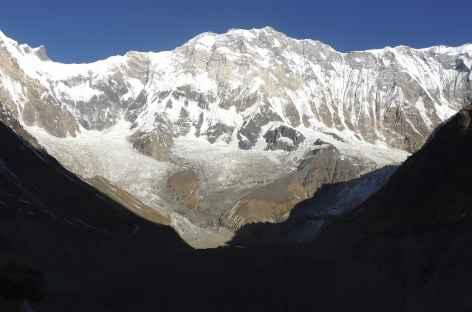 La face Sud de l'Annapurna, haute de 4000 m - Népal -