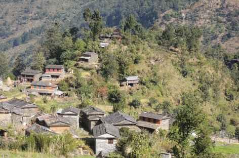 Entre Tatopani et Gorepani- Népal -