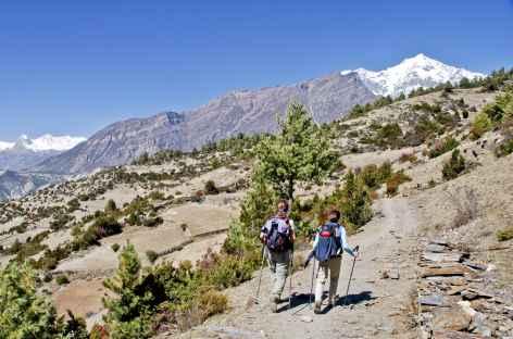 Montée vers Gyaru - Népal -