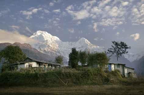 Lumières d'hiver sur l'Annapurna et sud - Népal -