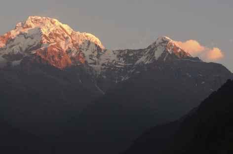 Soleil levant sur l'Annapurna sud - Népal -