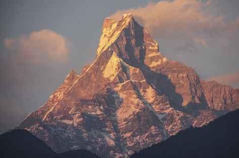 Lumières sur la Machapuchare - Népal -