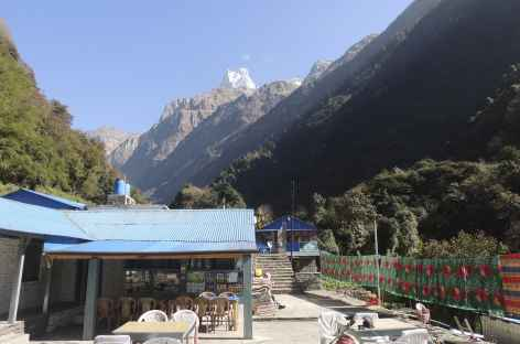 Machapuchare depuis Sinuwa hill top - Népal -
