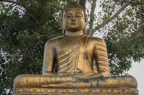 Buddha à Lumbini - Népal -