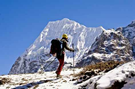 Entre Lonak et le camp de base - Kangchenjunga Népal -