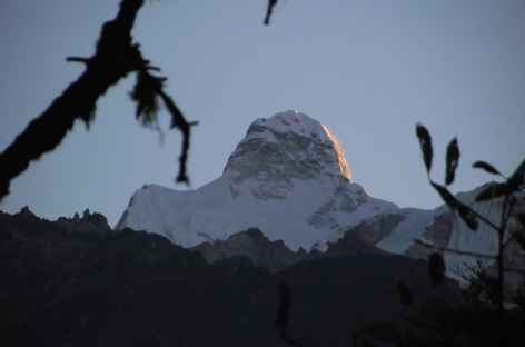 Torotan - Népal -