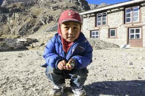 Regard curieux à Lobuche - Népal -