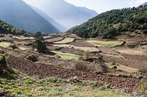 Cultures vers Namche - Népal -