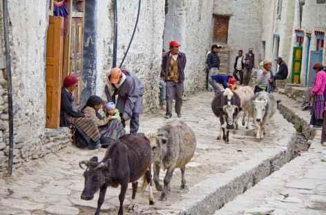 Dans les rues de Loau Mustang - Népal -