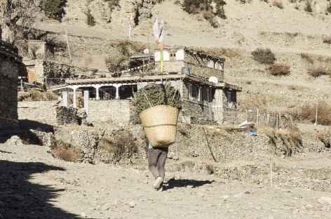 Portage du bois - Népal -