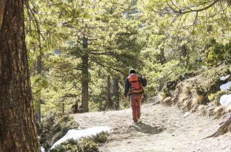 Sur le sentier - Népal -