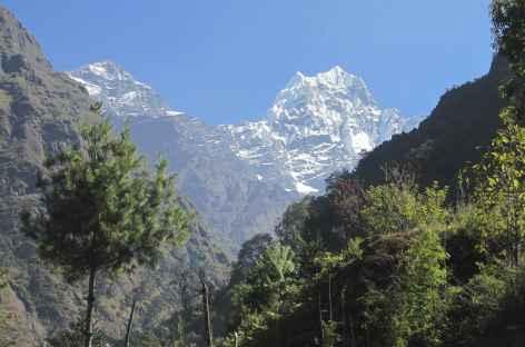 Vers Monjo - Népal -