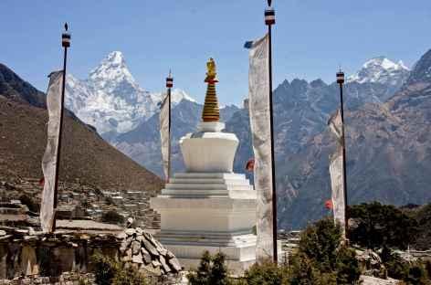 Stupa et sommet - Népal -