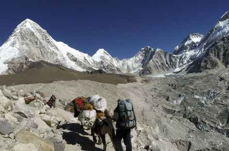 En montant vers Gorak Shep - Népal -