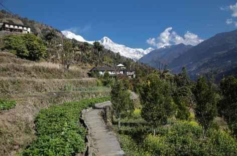 Paysage typique de ce flanc Sud des Annapurnas -