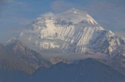 Daulaghiri  Vol Pokhara - Jomoson -  Népal -