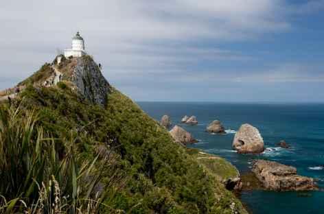 Phare de Nugget Point, côte des Catlins - Nouvelle Zélande -