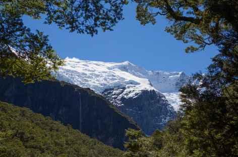 Glacier de Rob Roy - Nouvelle Zélande -