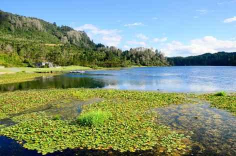 Vers le site de Orakei Korako - Nouvelle Zélande -