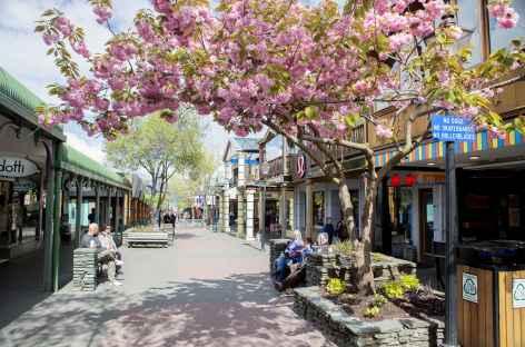 Ruelle de Queenstown - Nouvelle Zélande -