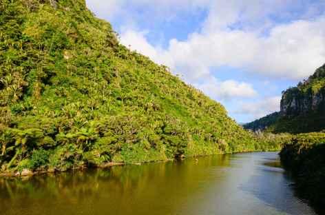 Vers Punaiki - Nouvelle Zélande -