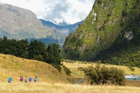 Randonnée menant au Rob Roy Glacier, massif de l'Aspiring - Nouvelle Zélande -