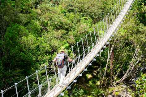L'un de nombreux ponts suspendus  menant à Roberts Point - Nouvelle Zélande -